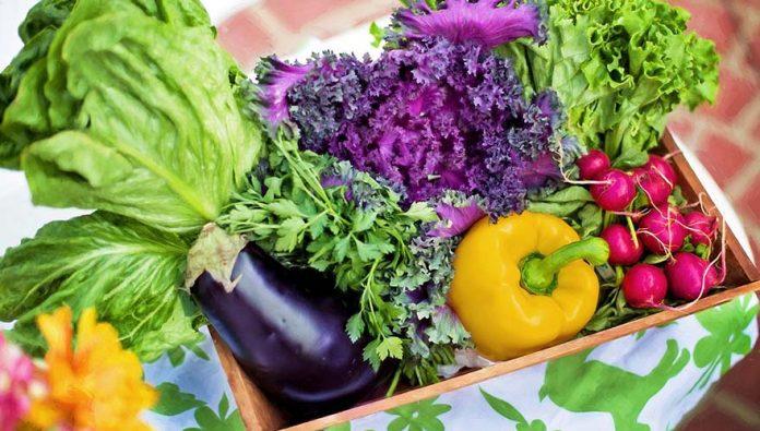 blog-brinquedos-didaticos-6 principais tipos de vitaminas importantíssimas para os bebês